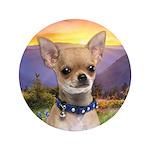 Chihuahua Meadow 3.5