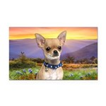 Chihuahua Meadow Rectangle Car Magnet