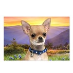Chihuahua Meadow Postcards (Package of 8)