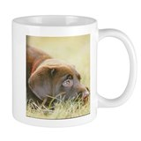 Chocolate labs Mug