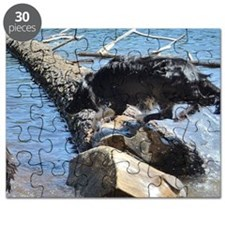 Crazy Water Dog Puzzle