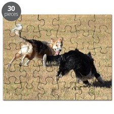 Two Border Collies Playing Puzzle