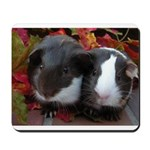 Mousepad with Autumn Babies