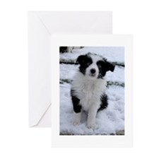 Cool Border collie puppy Greeting Cards (Pk of 20)