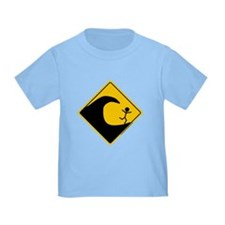 Tsunami Warning T
