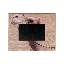 Egyptian Camel Photo Picture Frame