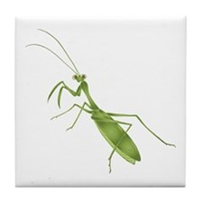 Praying Mantis Tile Coaster