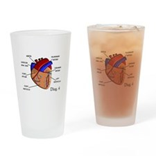 The heart Diagram BEST Shirts.PNG Drinking Glass