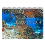 Cozumel Undersea Calendar