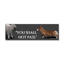 You Shall Not Pass - Car Magnet 10 x 3