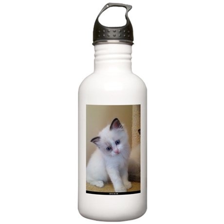 Ragalicious Ragdoll Kitten Stainless Water Bottle