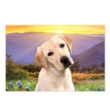 Labrador Meadow Postcards (Package of 8)