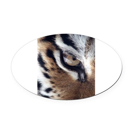 tigereye.jpg Oval Car Magnet