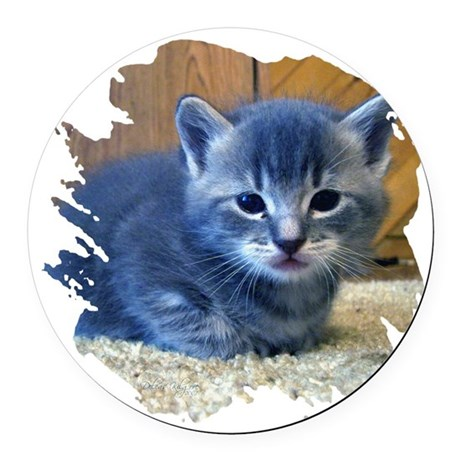 kitten4a.png Round Car Magnet