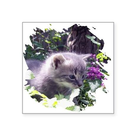 "kitten3b.png Square Sticker 3"" x 3"""