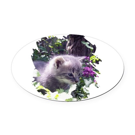 kitten3b.png Oval Car Magnet
