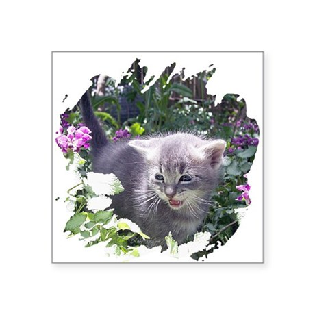 "kitten1b.png Square Sticker 3"" x 3"""