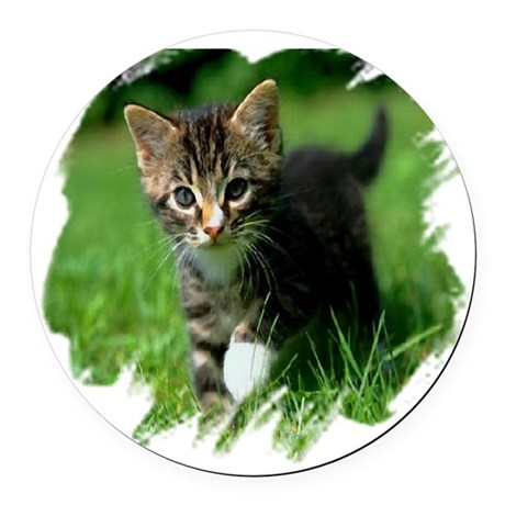 kitten Round Car Magnet