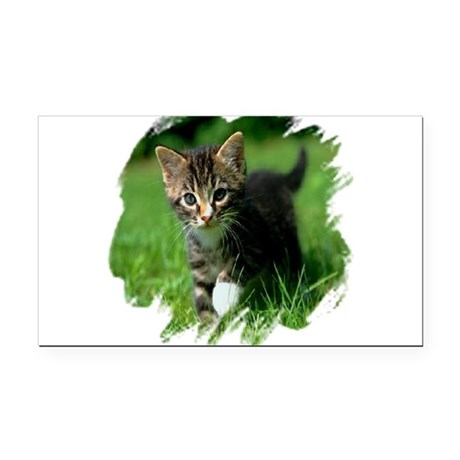 kitten Rectangle Car Magnet
