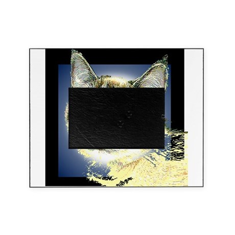 Blue Eyed Kitten Picture Frame