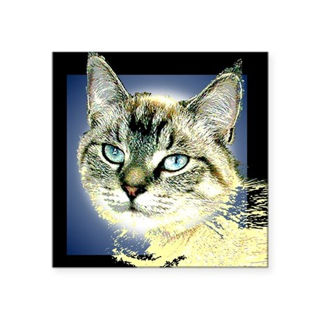 "Blue Eyed Kitten Square Sticker 3"" x 3"""
