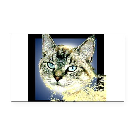 Blue Eyed Kitten Rectangle Car Magnet
