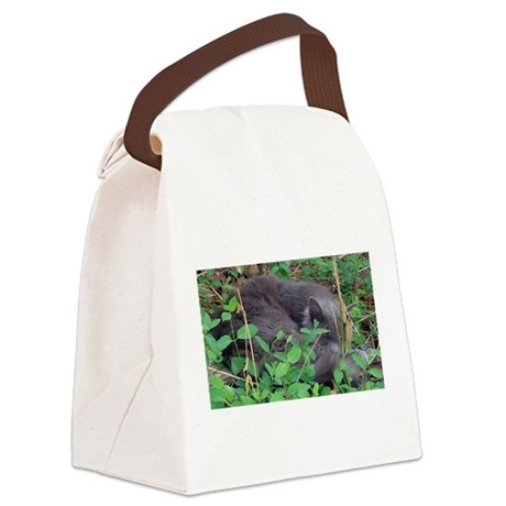 Little Taz Canvas Lunch Bag