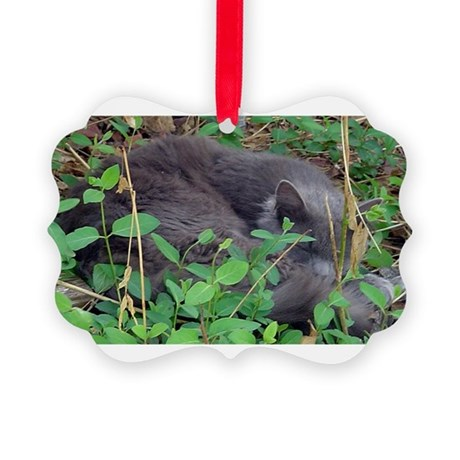 Little Taz Picture Ornament