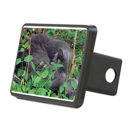 Little Taz Rectangular Hitch Cover