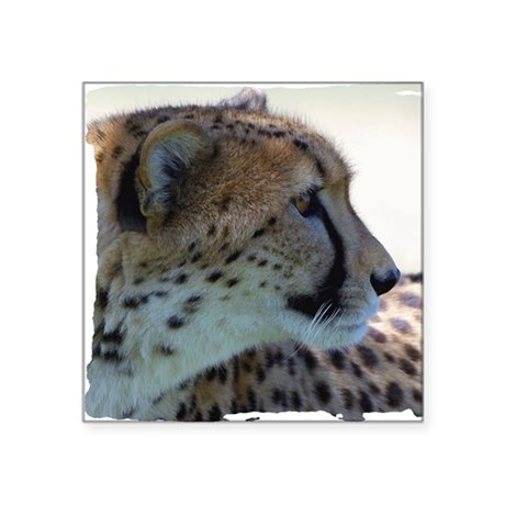 "cheeta Square Sticker 3"" x 3"""