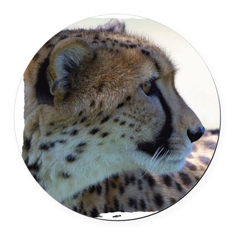 cheeta Round Car Magnet
