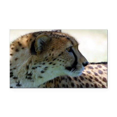 cheeta Rectangle Car Magnet