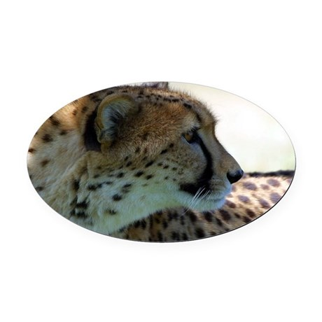 cheeta Oval Car Magnet