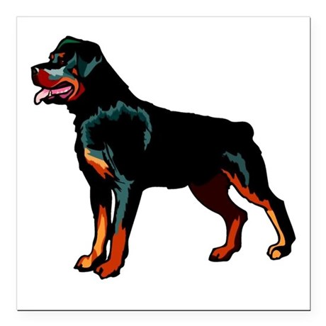"rott Square Car Magnet 3"" x 3"""
