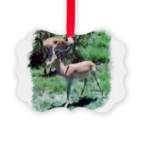 Gazelle Picture Ornament