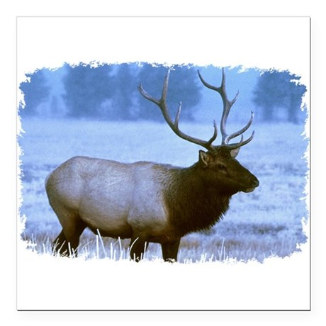 "elk Square Car Magnet 3"" x 3"""