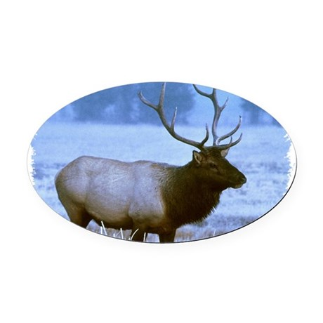elk Oval Car Magnet