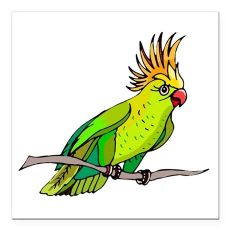 "parrot Square Car Magnet 3"" x 3"""