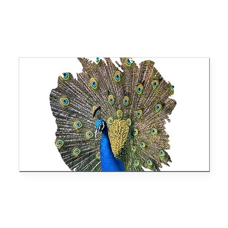 peacock.png Rectangle Car Magnet