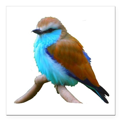 "bluebird.png Square Car Magnet 3"" x 3"""