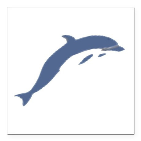 "dolphin Square Car Magnet 3"" x 3"""