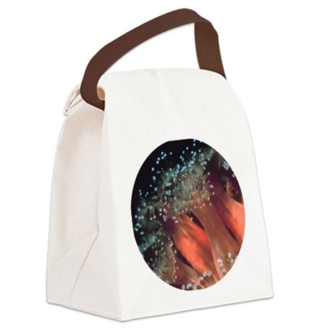anemone.png Canvas Lunch Bag
