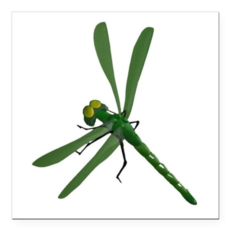 "dragonfly7a.png Square Car Magnet 3"" x 3"""