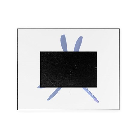 dragonfly7c.png Picture Frame