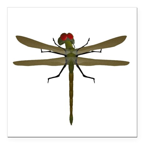 "dragonfly8a.png Square Car Magnet 3"" x 3"""