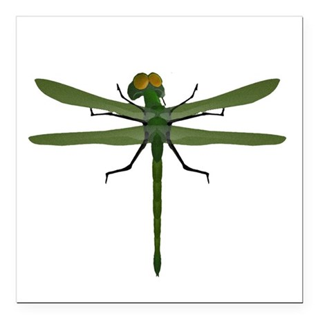 "dragonfly8c.png Square Car Magnet 3"" x 3"""