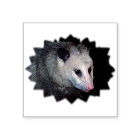 "awesome possum Square Sticker 3"" x 3"""