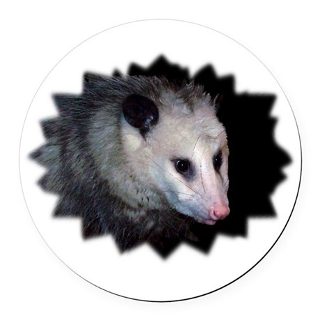 awesome possum Round Car Magnet