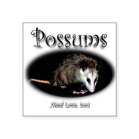 Possums Need Love Too Square Sticker 3&quot; x 3&quot;