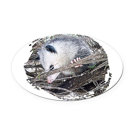 possum Oval Car Magnet